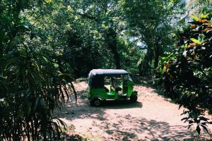 A tuk-tuk parked in the jungle